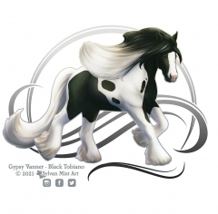 Black Tobian Gypsy Vanner Horse