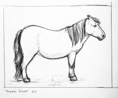 Horse sketches 02